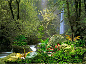 Garden Of Eden Location Today In The Bible Garden Free Engine Image For User Manual Download