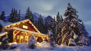 The festivities and glory of Christmas in the woods.