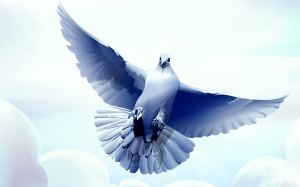 The Peaceful and Benevolent Dove