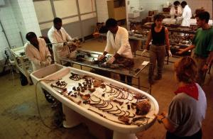 Forensic Anthropologists at work in the Morgue of the OCME.