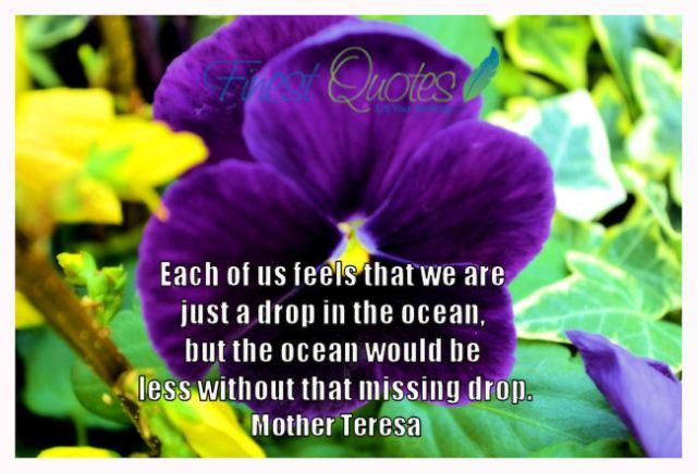 """""""A drop in the ocean......"""" - Mother Teresa"""
