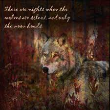 """And then there are the nights when the wolves are silent and the moon howls."" - George Carlin"