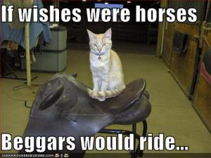"""If wishes were Horses, Beggars would ride."""