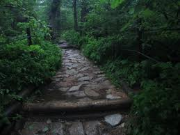 "The Trail - the pathways and byways that form the, ""Road of Life."""