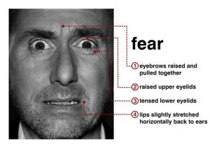 Fear as an Emotion