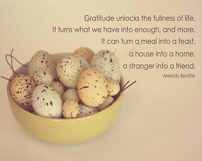 The way to a healthier and happier lifestyle is by imbibing gratitude into your daily life.
