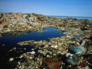 The polluted ocean and ravaged seas.