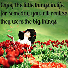 Value the little things in life: they are vital!