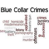 What constitute Blue Collar Crimes?