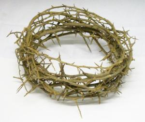 The torture of Being Burdened by a Crown of Thorns (Photo Credit: http://www.faithcrc.net/?m=20120304)