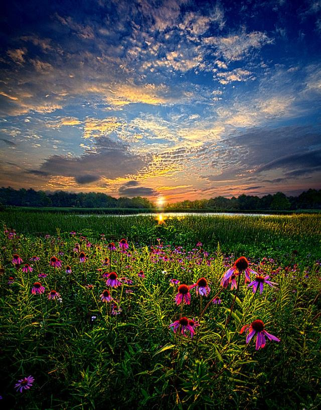 End of the Night - Phil Koch. (Photo Credit: http://fineartamerica.com/featured/end-of-the-night-phil-koch.html)