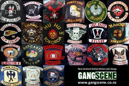 Street gangs, motorcycle gangs and prison gangs are powerful and often violent peer pressure groups.