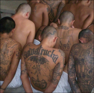 Street gangs, motorcycle gangs and prison gangs are powerful and often violent peer pressure groups.