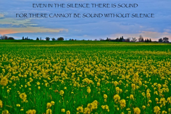 There is Sound - of a certain kind - even in Silence.