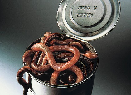 A can of worms.