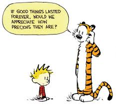 Calvin & Hobbes quote.