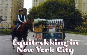Equitrekking in New York City.