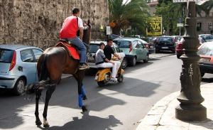 Horse-riding in the city.