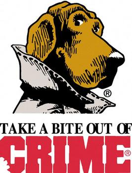 What Can Be Done to Prevent Crime in the World?