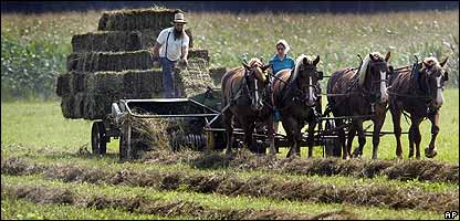 The Amish - a farming community